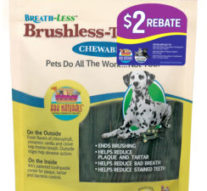 Brush Up: Keeping Your Dog's Teeth Healthy